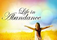Abundance-Experience.jpg