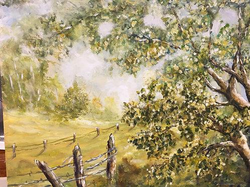 Tree in Meadow