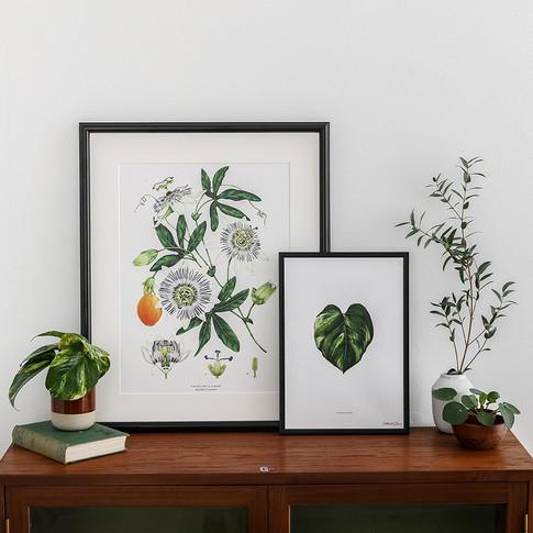 Catherine Lewis Design