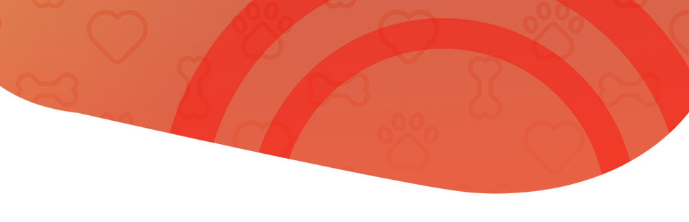paw-banner.png