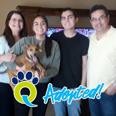 Zoey's new family!