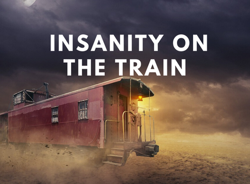 Insanity on the Train