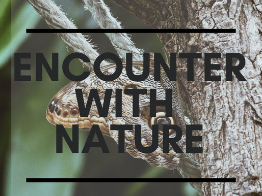 Encounter with Nature