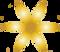 logo goud en transparant - kopie.png