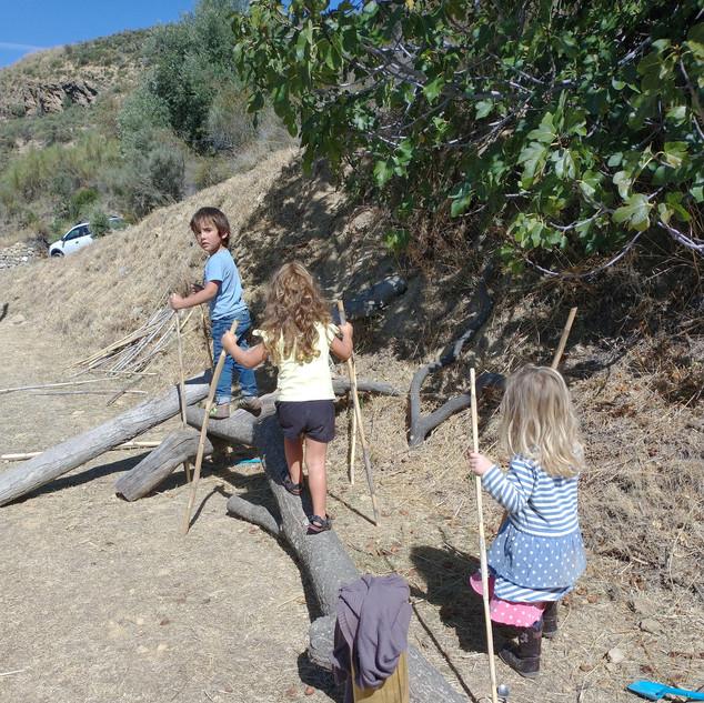 climbing stick.jpg