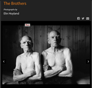 The Brothers by Elin Hoyland