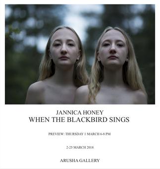 When The Blackbird Sings - Jannica Honey