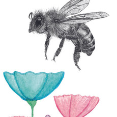Honey bee tag