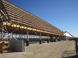 cattle barn 4.jpg