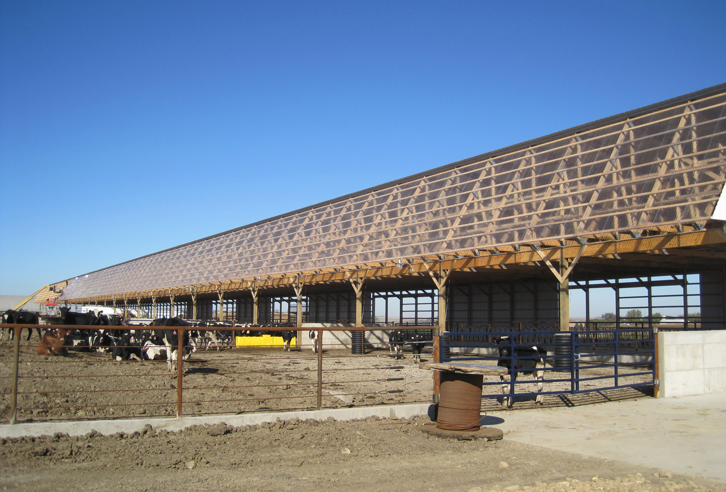 cattle barn 1.jpg