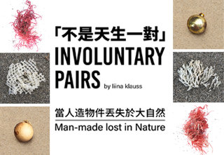 INVOLUNTARY PAIRS man-made lost in Nature