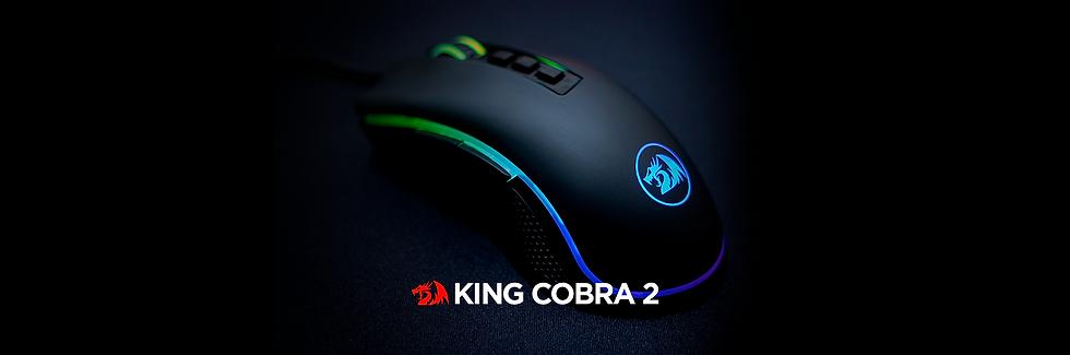 Banner Pagina Produtos King Cobra.png