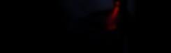 Banner_holograma.png