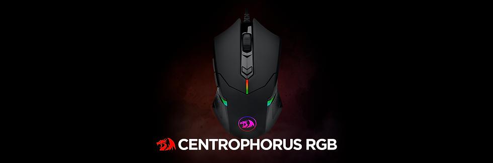 Centrophorus rgb.png