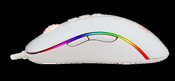 M702W-RGB-5.png