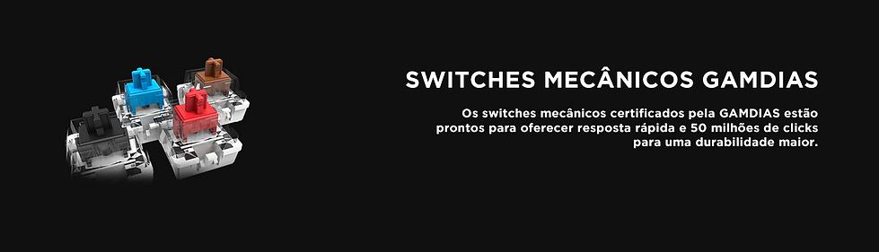 switchs gamdias.png