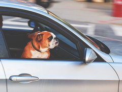 Does driving for a charity carry risks?