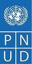 Logo_PNUD2020.jpeg