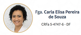 carla_elisa_pereira_de_souza_otorrino_pe
