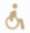 acessibilidade medico otorrino pediatra df emergencia criança otorrinolaringologia asa sul asa norte brasilia distrito federal lago sul lago norte urgente ouvido nariz garganta adulto