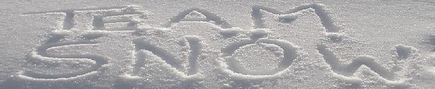 Team Snow - Snow Logo.jpg