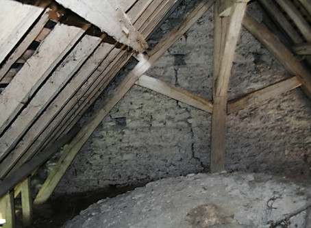 Mold Remediation Explained