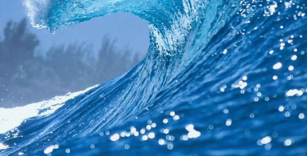 Aqua - holic