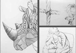Illustrationen Studien