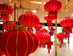 Chinese New Year - Year of the Pig - Flu