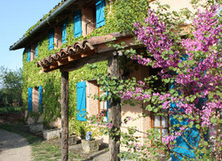 Front of Cottage Fleuri