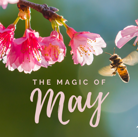 May in the Beehive