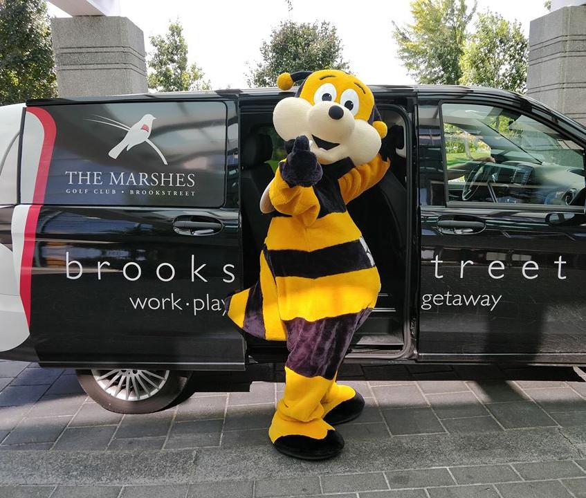 Brookstreet's Buzz