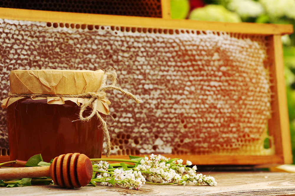 Buckwheat honey in honeycomb, jar and buckwheat flowers