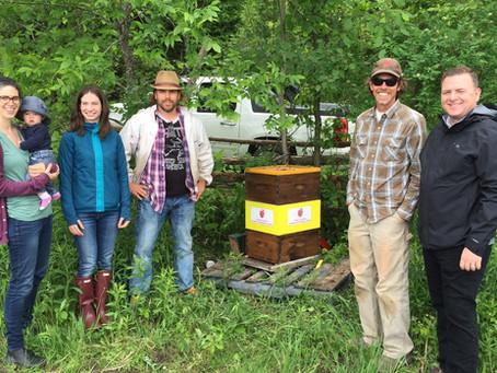 Ottawa Food Bank Beehive