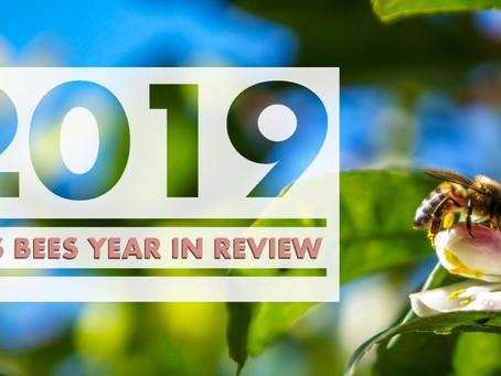 2019 Recap: A Busy Buzzy Year