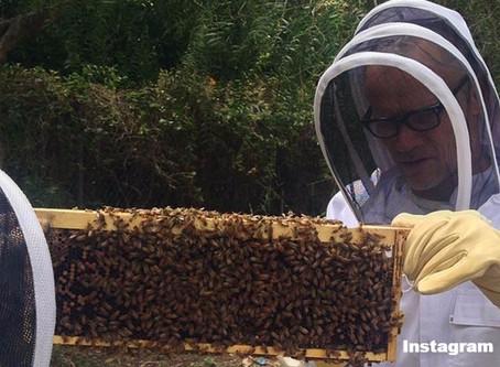 5 Celebrity Backyard Beekeepers