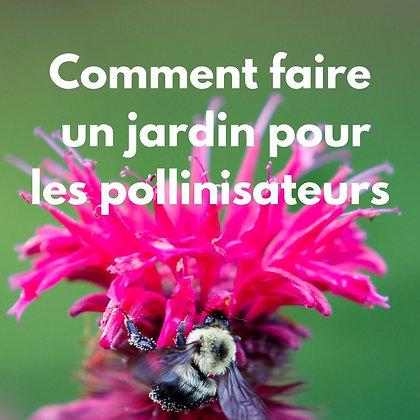 Comment faire  un jardin pour les pollinisateurs