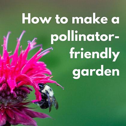 How to make a  pollinator-friendly garden