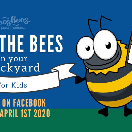 Meet the Bees - A Live Facebook Show for Kids