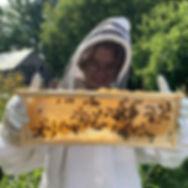 Honey-Farm-Tour-3.jpg