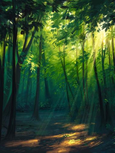 foreststudy5 web.jpg