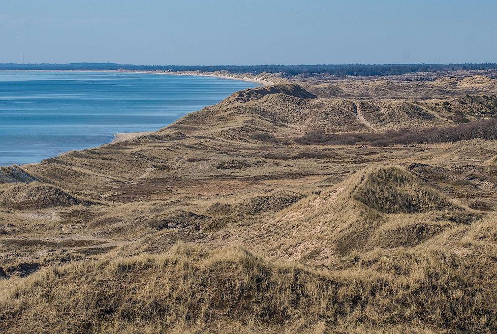 Syd for Skagen med udsigt ud over den sydøstlige del af Hulsig Hede(foto: Rune Engelbreth Larsen)