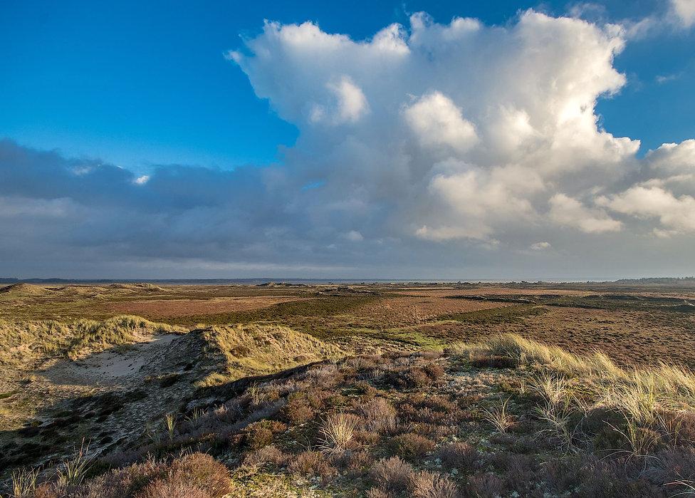 Filsø Hede (foto: Rune Engebreth Larsen)