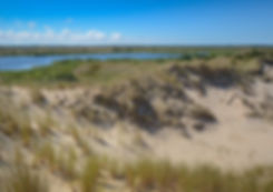 Milesøerne, syd for Råbjerg Mile(foto© Rune Engelbreth Larsen)