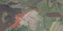 Vildhesteareal ved Skavenhus, Skjern Floddelta
