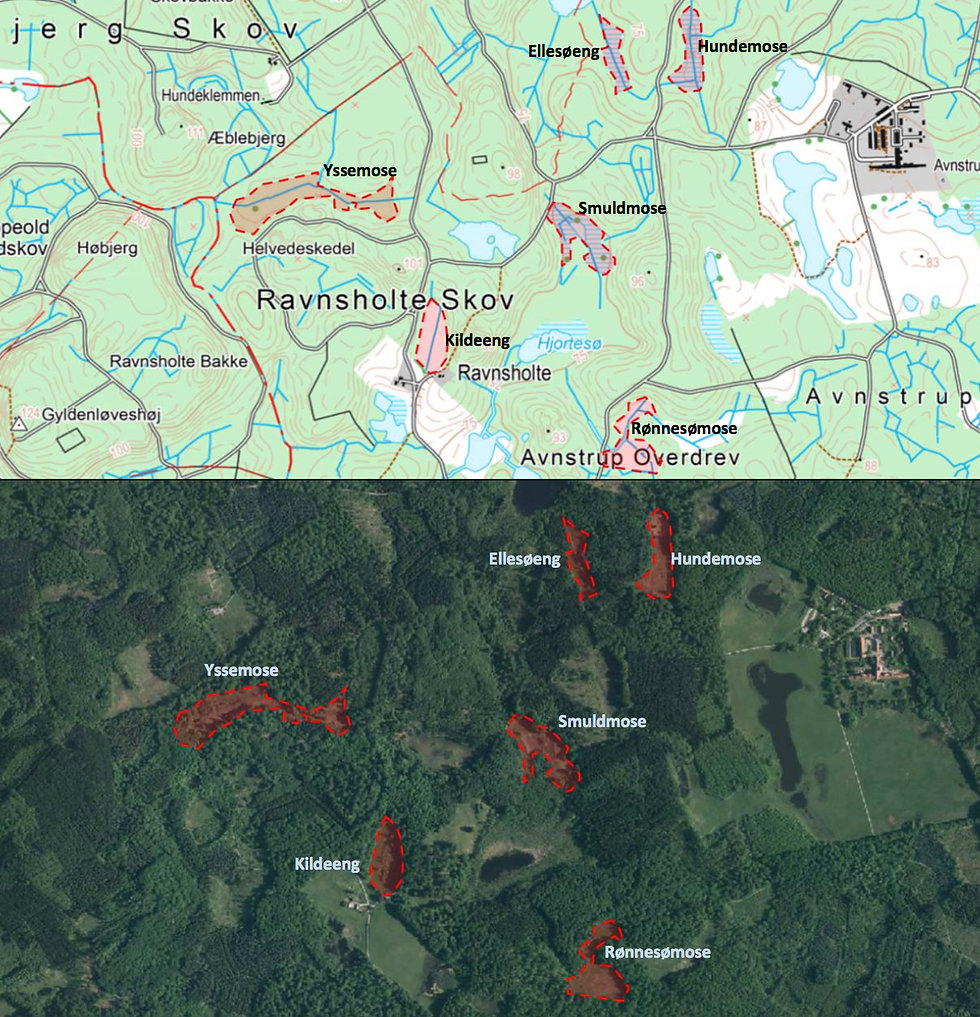 Kort over vigtige sommerfuglelokaliteter, Bidstrup Skovene (grafik: Kristian Graubæk)