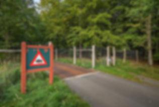 Indgang til Bisonskoven på Bornholm (foto: Rune Engelbreth Larsen)