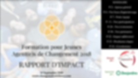 1 - Rapport d'impact.PNG