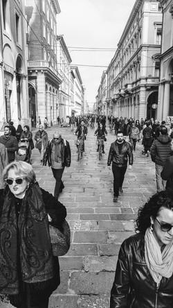 Bologna in rette parallele