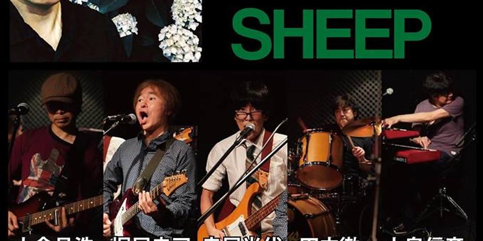 Sheep + 森川 祐護 2マンlive@湯島Fabulous guitars